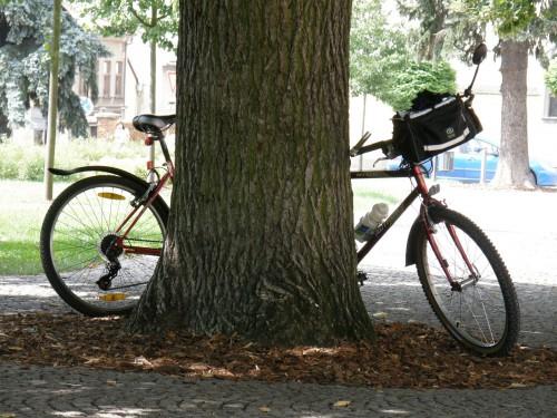 Jeden alebo dva bicykle?