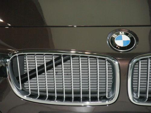 BMW - detail prednej masky chladiča